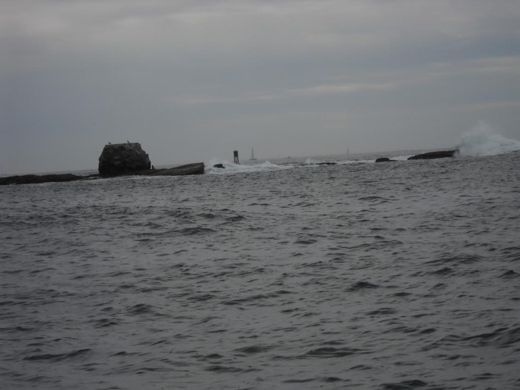 Whale Rock