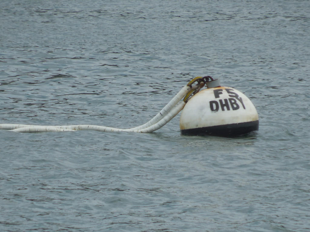 Mooring float and pennant